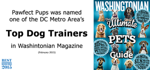 Washingtonian-Top-Dog-Trainers-image2